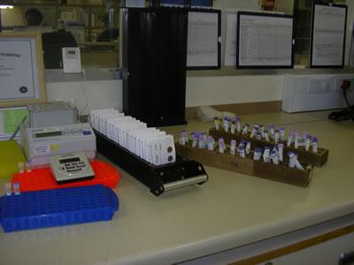 Diagnostic PCR bench