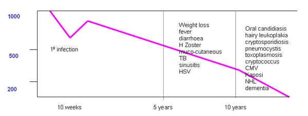 CD4 loss due to HIV
